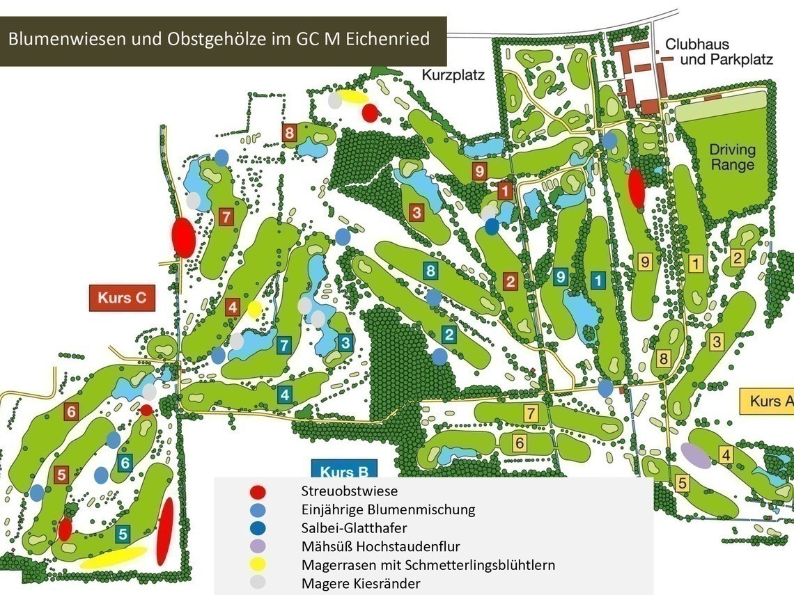 Blumenwiesen und Obstgehölze im GC München Eichenried