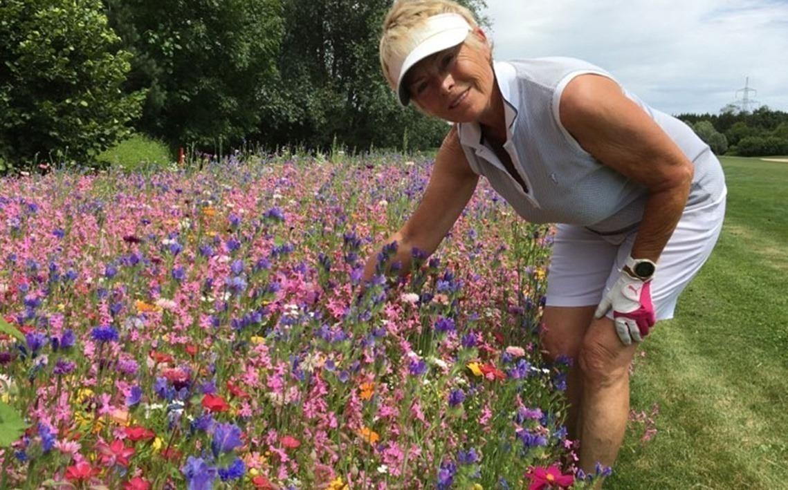 Modisch bunt präsentieren sich auch die Eichenrieder Blumenwiesen – zur Freude der Damen und der Insekten!